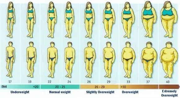 Có hay không phương pháp giảm béo nhanh mà vẫn an toàn? 1