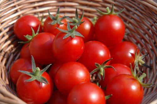 Giảm cân hiệu quả bằng công thức detox từ cà chua